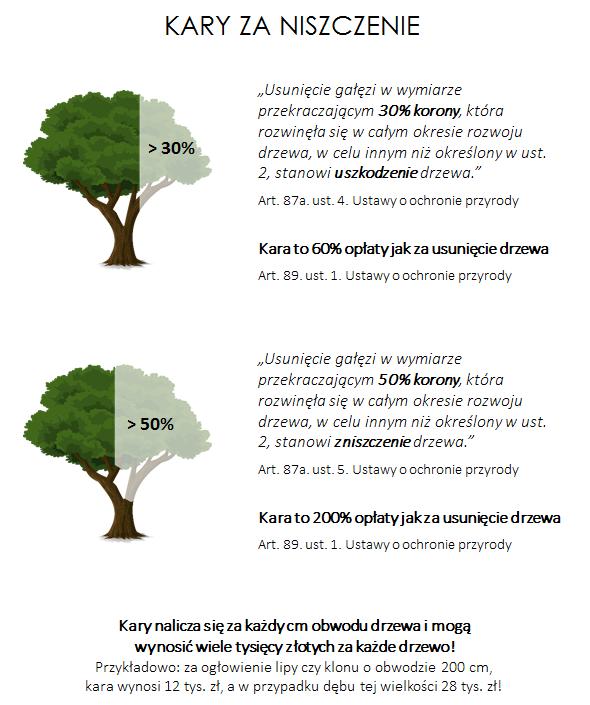kary za niszczenie drzew