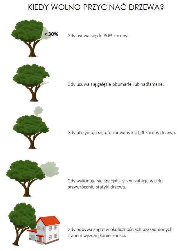 kiedy wolno przycinać drzewa